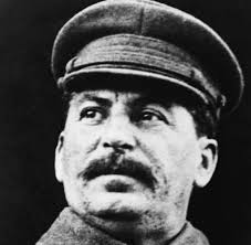 Stalin met pet